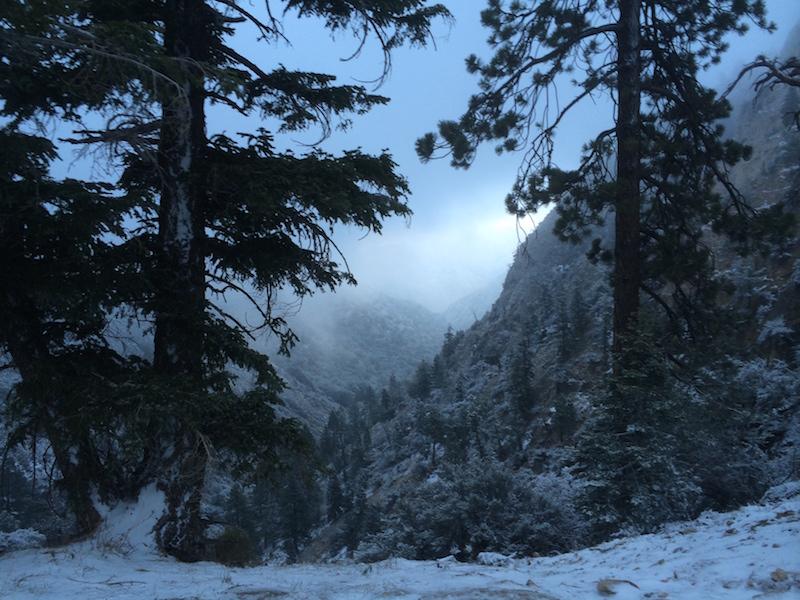 Snowstorm, May 6th, 2014, San Bernardino National Forest, CA